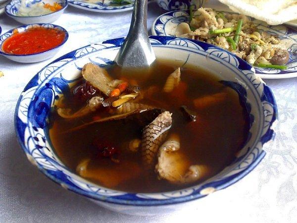 Fotografia g-astronomica Snake-soup